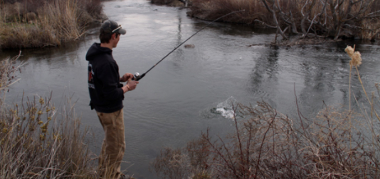 Fish on! Where to catch fish in Southern Idaho! - Southern